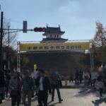 『宇都宮餃子祭り2019』【駐車場・アクセス】