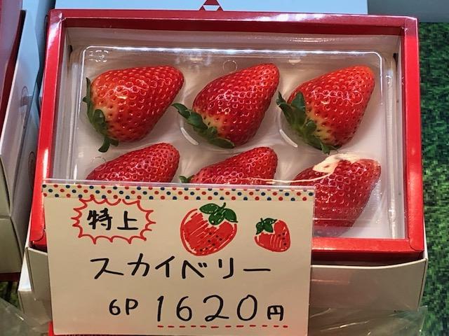 宇都宮駅で栃木の苺(いちご)「とちおとめ」「スカイベリー」を紹介