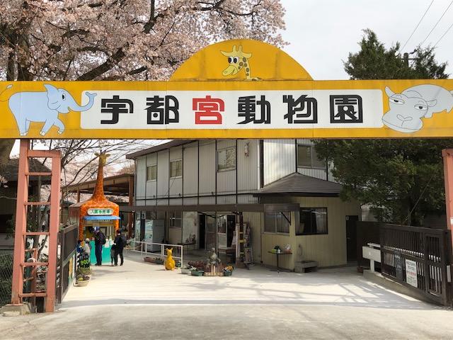 地元民もおすすめのスポット宇都宮動物園3つの魅力 【体験動画あり】